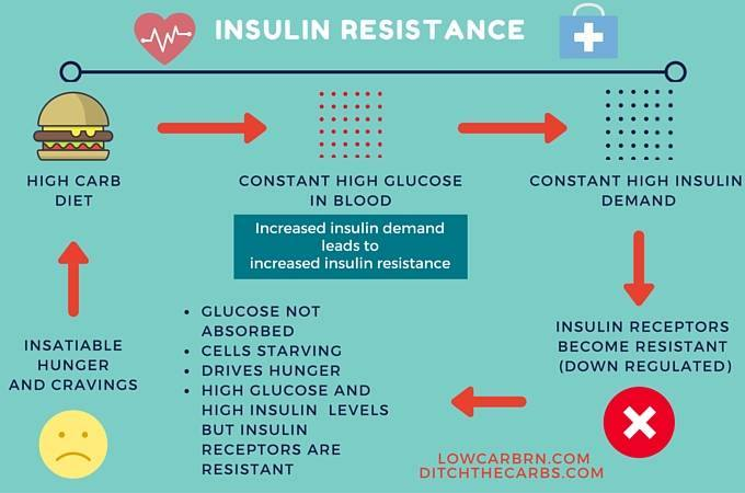 Image result for Insulin Resistance
