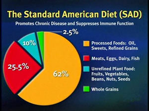 StandardAmericanDietChart-2