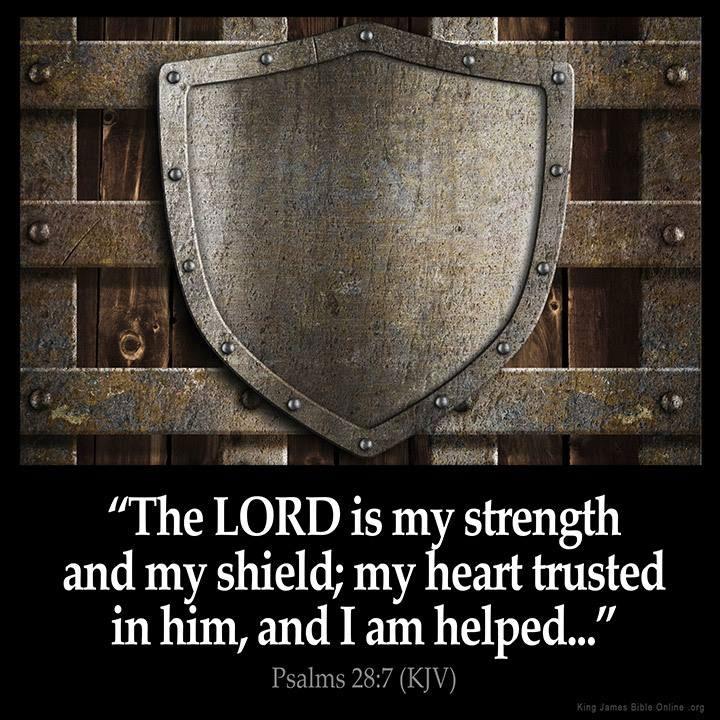 Lord-strength-shield