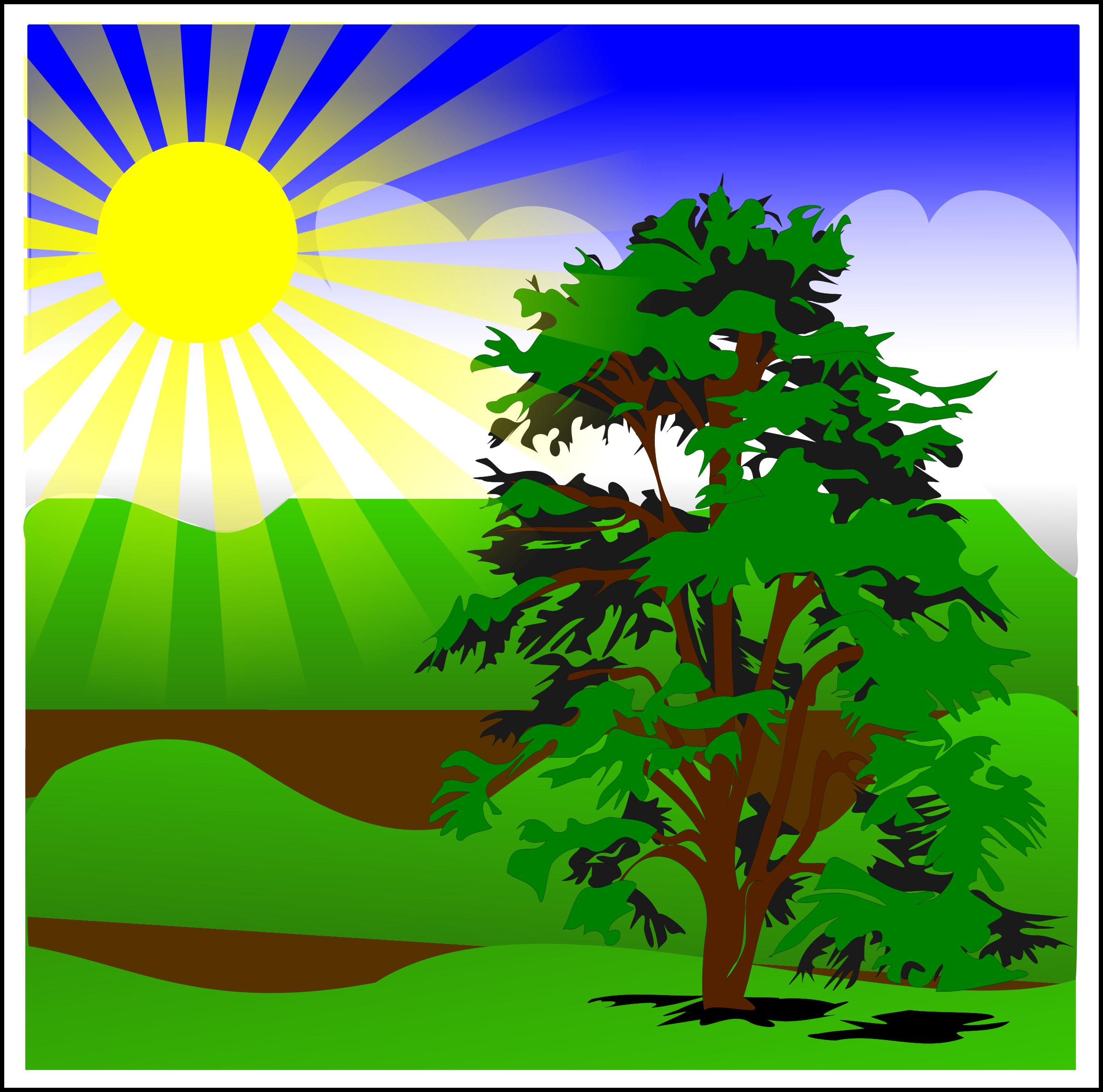 Sunlight Adventist Vegetarian Diabetics