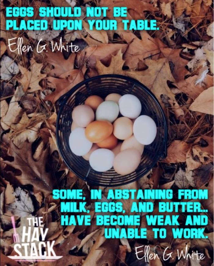 eggs-EGW